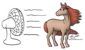horseFan