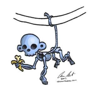 monkey-skeleton